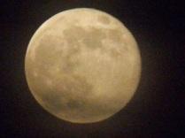 20130624-084949.jpg